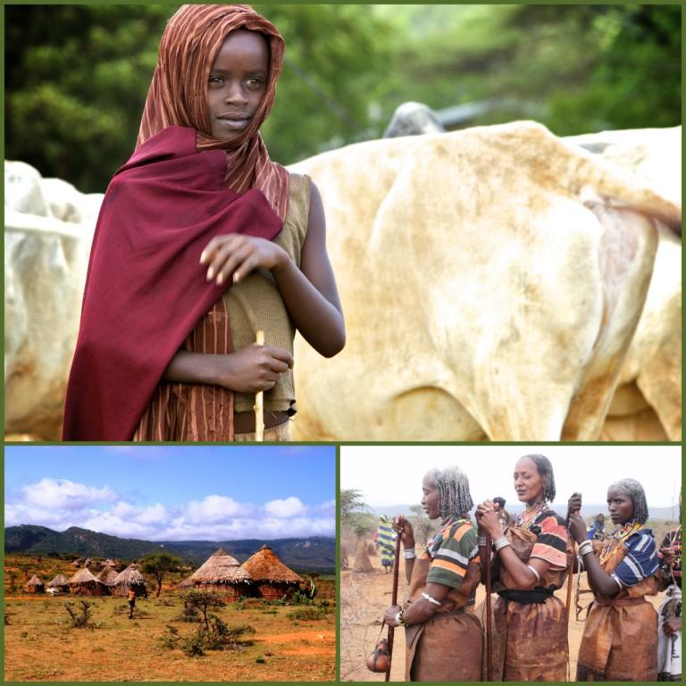 Borana Culture Ethiopia