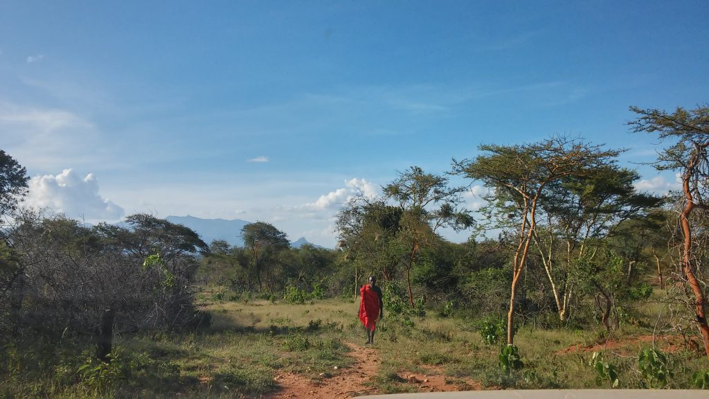 CLM Kenya